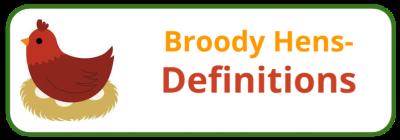 Broody Hen Behaviour & Biology - Edited